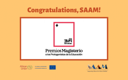SAAM has been awarded as one of the Protagonists of Education 2020 (ENG/FR)